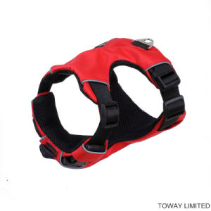 Large Safe Pet Products Supply Nylon Buckle Dog Harness pictures & photos