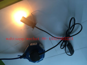 UK Standard E14 Holder Salt Lamp Power Cord with on/off switch pictures & photos