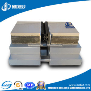 Thermal Concrete Floor Expansion Joints with Rubber Strip pictures & photos