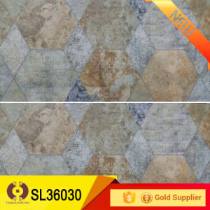 300*600mm Home Decoraion Outdoor Ceramic Wall Tiles (SL36030) pictures & photos
