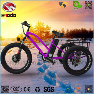 Aluminum Alloy 48V 500W Cargo Electric Tricycle for Adult pictures & photos