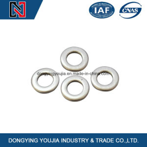 Stainless Steel Plain Washer pictures & photos