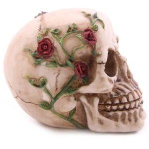 Lifesize 1: 1 Human Skull Replica Resin Model Anatomical Medical Skeleton pictures & photos