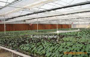 Evaporative Cooling System Water Cooling Pad Wall for Greenhouse pictures & photos