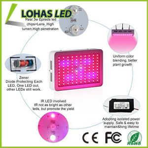 Full Spectrum Hydroponic LED Plant Grow Light with 300W-1200W AC85-265V pictures & photos