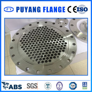 Stainless Steel Forged Tube Plate (PY0138) pictures & photos