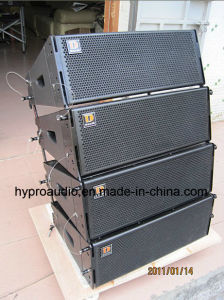 Two-Way Line Array (250W) (DS2065) pictures & photos