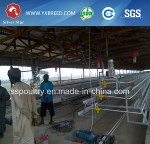 Low Price Automatic H Type Poultry Battery Cage System pictures & photos