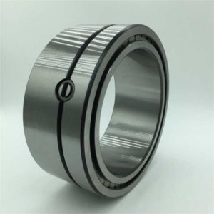 SL024924 Cylindrical Roller Bearing SKF Rolling Bearings pictures & photos