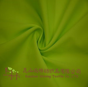 Polyester Full Dull 290t 300t Taffeta Fabric pictures & photos