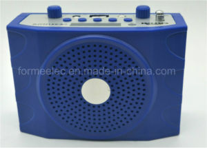 FM Card Radio Multimedia Education Loudspeaker School Amplifier pictures & photos