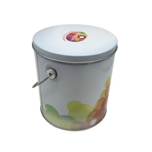 Wholesale Round Shape Handle Tin Box Popcon Box Handly pictures & photos