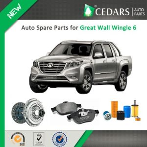 Chinese Auto Spare Parts for Great Wall Wingle 6 pictures & photos