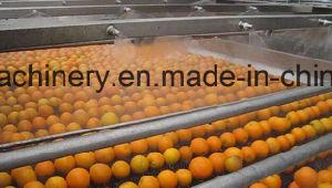 Complete Orange Juice Processing Line pictures & photos