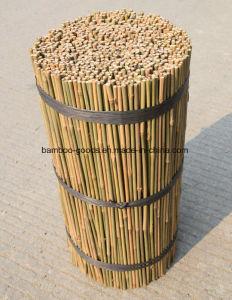 Bamboo Sticks pictures & photos