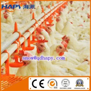 Breeder Farm Equipment with Poultry Environmental Control Shed pictures & photos