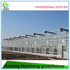 2017 China Supplier Garden Greenhouse pictures & photos
