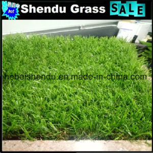 5 Years Life Guarantee 25mm Artificial Lawn Grass pictures & photos