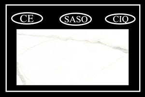 Best Quality 60X120cm Lobby Tile Construction & Decoration (PD1620201P) pictures & photos