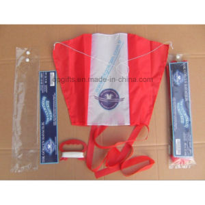 Promotional Gifts Outdoor Popular Custom Cheap Kite pictures & photos