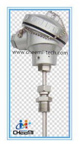 Thermocouple Wzpk Rtd PT20 PT100 PT500 PT1000 Type Temperature Sensor pictures & photos