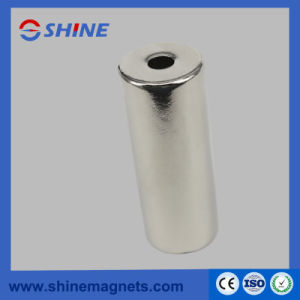 Diametrical Neodymium Magnet Rotor for Pump pictures & photos