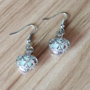 Heart Locket Glow in The Dark Drop Earrings Ear Piercing Jewelry Gift pictures & photos