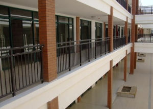 Custom Free Maintenance Powder Coated School Infrastructure Fence pictures & photos