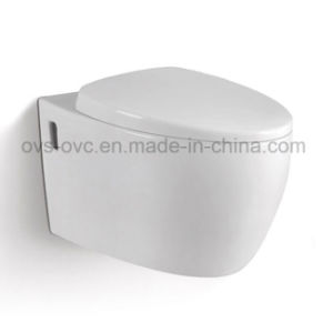 Made in China Elevated Toilet Seat pictures & photos