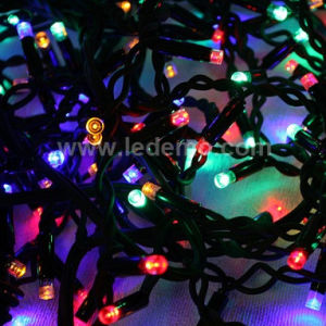 LED Holiday Strip Light for Outdoor pictures & photos