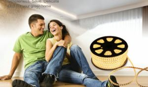 LED Warm White Lighting 220V LED Rope Light for Promotion pictures & photos