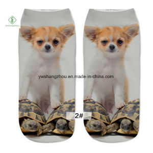 Europe New Factory 3D Dog Printed Cartoon Custom Boat Socks pictures & photos