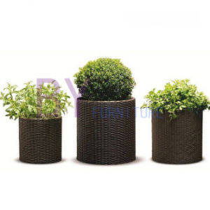Succulent Plant Home Gardening Cylindrical Floor-Standing PE Rattan Flower Pot pictures & photos