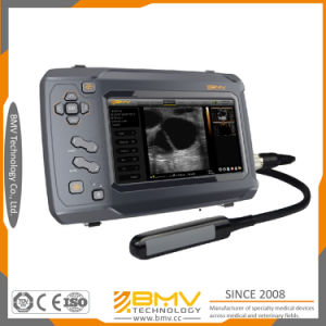 Bovine Ultrasound Fetal Measurement Bestscan S6 Advanced Portable Ultrasonic Detector pictures & photos