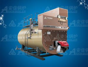 Horizontal Oil (Gas) Condensing Steam Boiler Wns20 pictures & photos