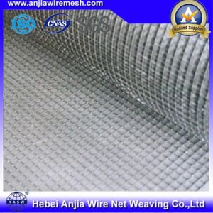 Hot Sale Square Wire Mesh Gavanized Mosquito with Low Price pictures & photos