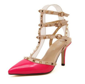 New Style Fashion High Heel Ladies Dress Shoes (HCY02-1705)