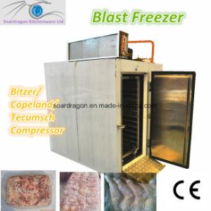Blast Freezer/Deep Freezer /Quick-Freezer with Bitzer Compressor (BF-4-S) pictures & photos