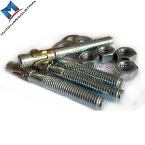 fastener Bolt Stainless Steel /Zinc Wedge Anchor pictures & photos