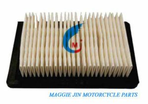 Lawnmower Air Filter (36046/5-5.5 HP Vector #Taf- Mower Filter & 36046 Filter) for Garden Machine pictures & photos