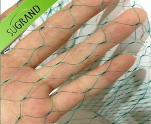 10cm Mesh Extruded Green Plant Support Net pictures & photos