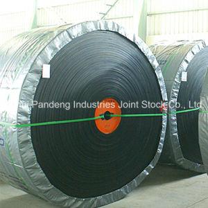 Conveyor System/Rubber Conveyor Belt/Oil-Resistant Conveyor Belt pictures & photos