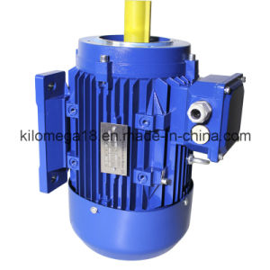 Three Phase Cast Iron Electric Motor with Ce Certificate 10kw pictures & photos