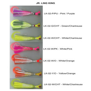 Jig Head Fishing Lure with Single Tail and Feather pictures & photos