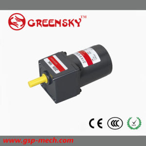 6W AC Geared Electrical Motor with Brake pictures & photos