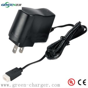 3.6V 0.8A LiFePO4 Battery Charger pictures & photos
