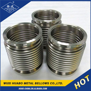 China Supplier 304 Stainless Steel Bellows Wholesale pictures & photos