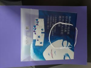 High Quality Printing PP\PVC Shopping Bag with Handle pictures & photos