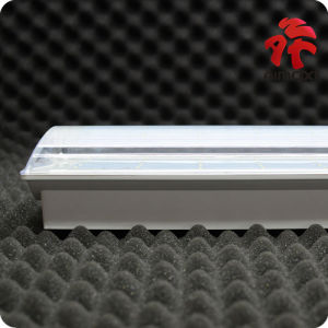 LED Emergency Bulkhead Light/ Maintained Plastic Housing/Emergency 3hours Light pictures & photos