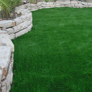 Artificial Grass and Mats pictures & photos